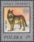 Ochrona środowiska - ginące zwierzęta - 2357