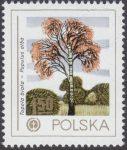 Ochrona środowiska - drzewa - 2424