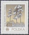 Ochrona środowiska - drzewa - 2425