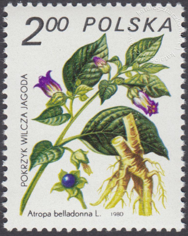 Rośliny lecznicze znaczek nr 2558