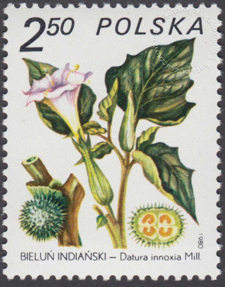 Rośliny lecznicze znaczek nr 2559