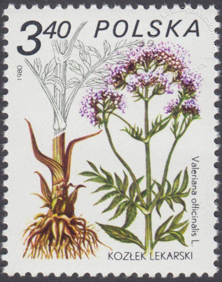 Rośliny lecznicze znaczek nr 2560