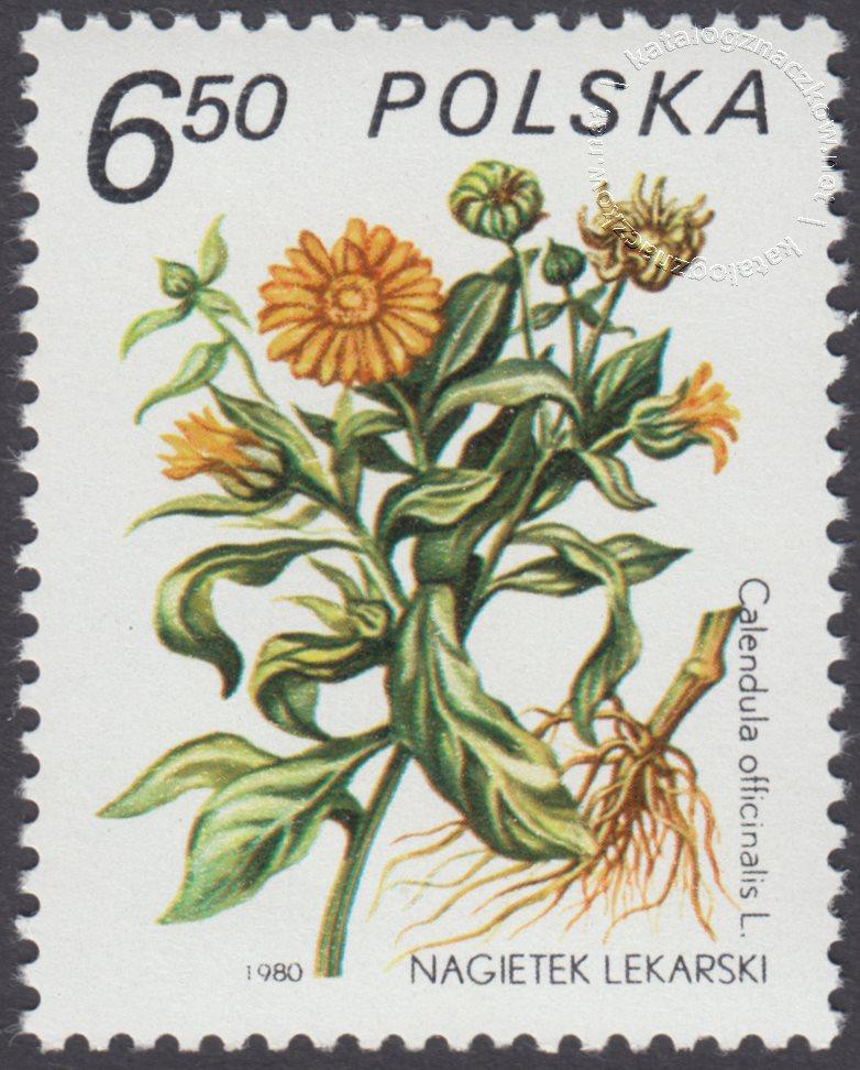 Rośliny lecznicze znaczek nr 2562