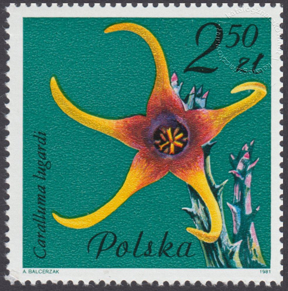Kwiaty sukulentów – kaktusy znaczek nr 2640