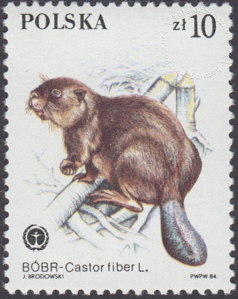 Chronione zwierzęta futerkowe znaczek nr 2801