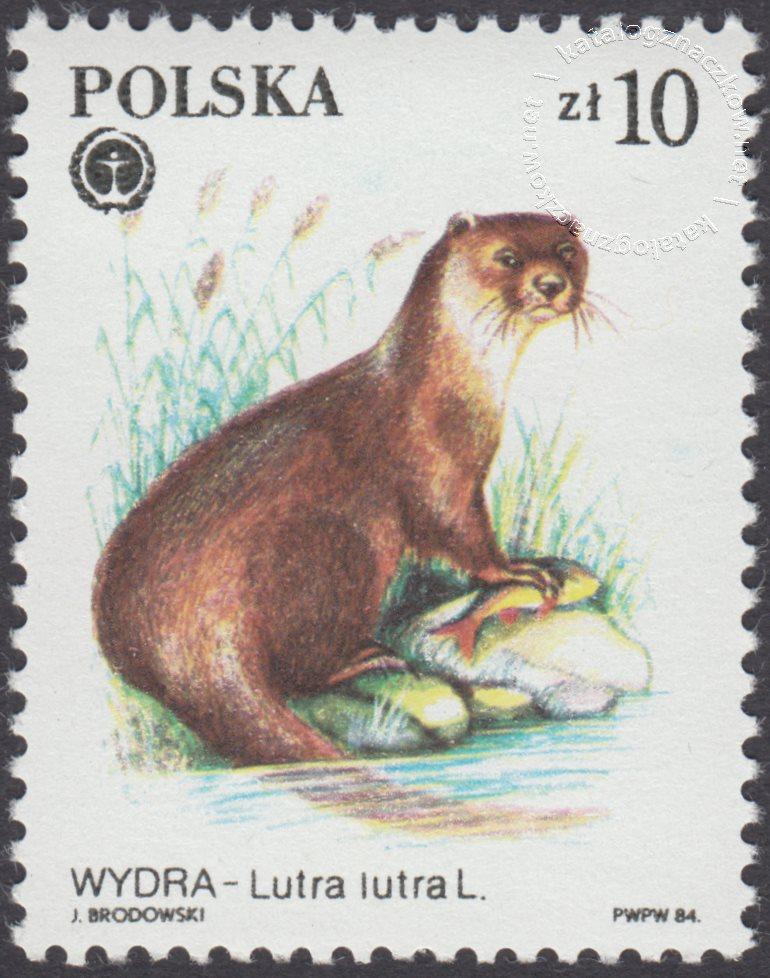 Chronione zwierzęta futerkowe znaczek nr 2802