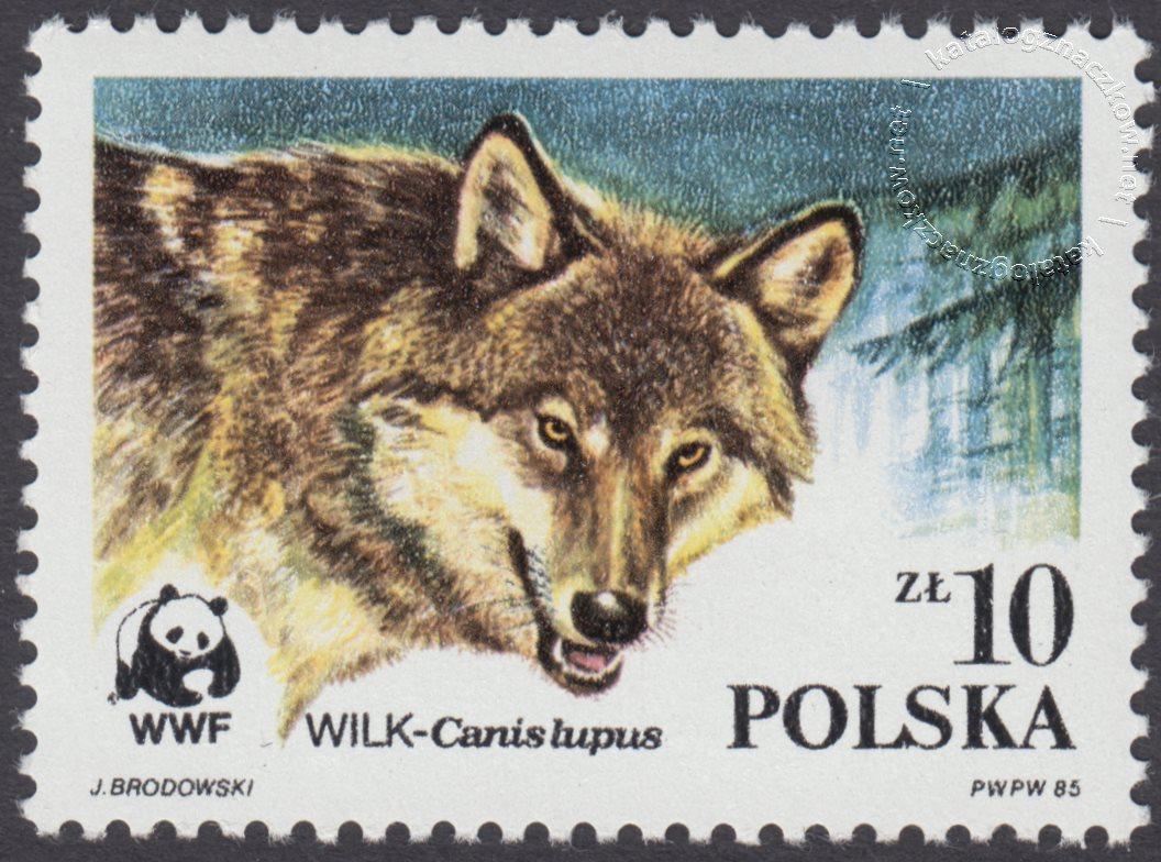 Dzikie zwierzęta chronione – wilk znaczek nr 2829