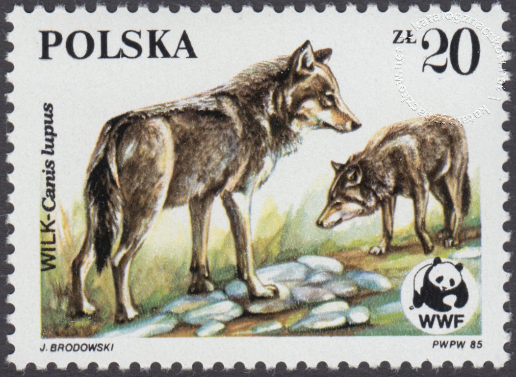Dzikie zwierzęta chronione – wilk znaczek nr 2830