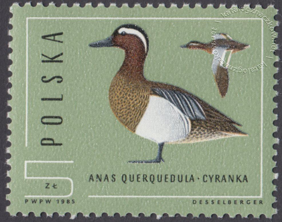 Ptaki – dzikie kaczki znaczek nr 2851