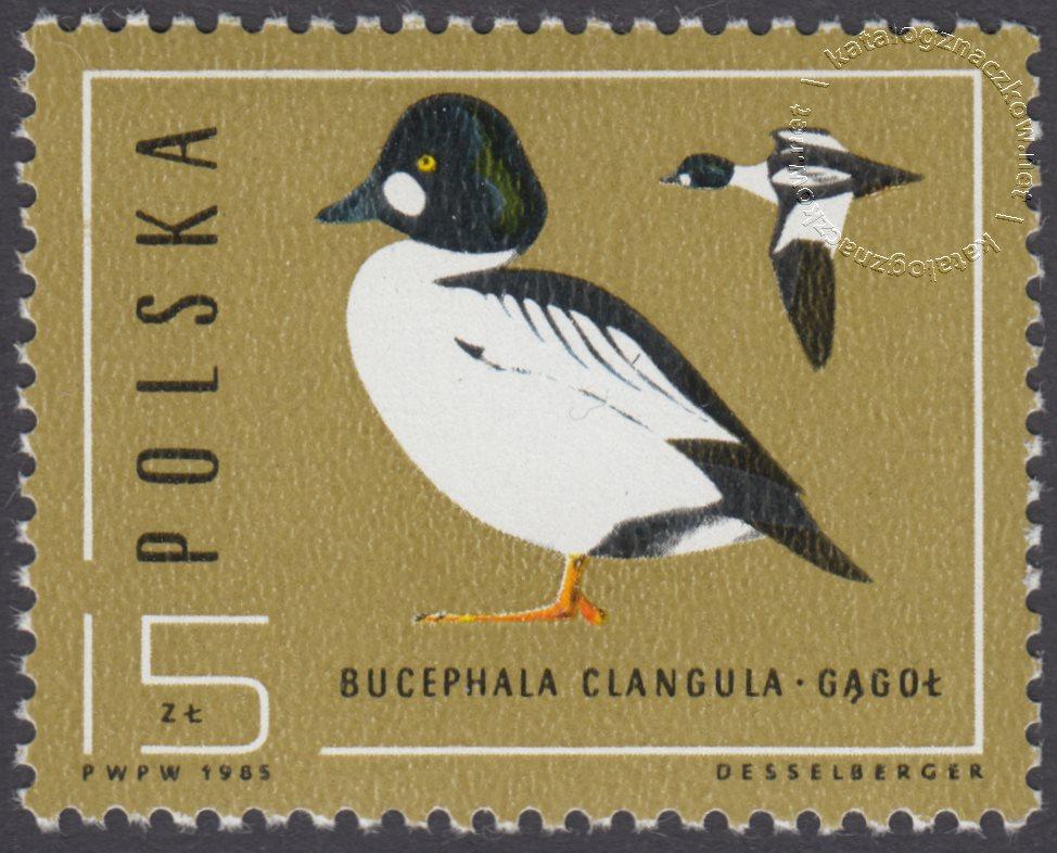 Ptaki – dzikie kaczki znaczek nr 2853