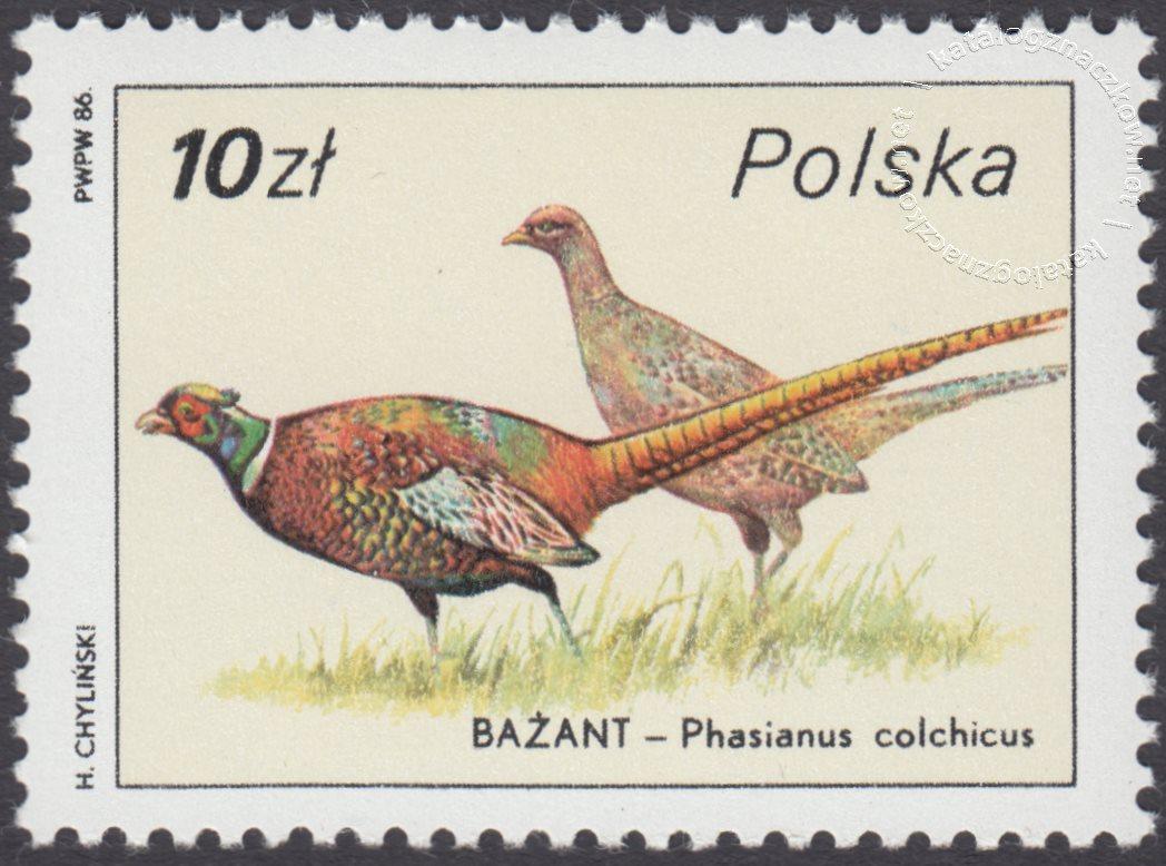 Ptactwo i zwierzyna łowna znaczek nr 2873