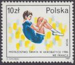 Sportowe sukcesy Polaków - 2970