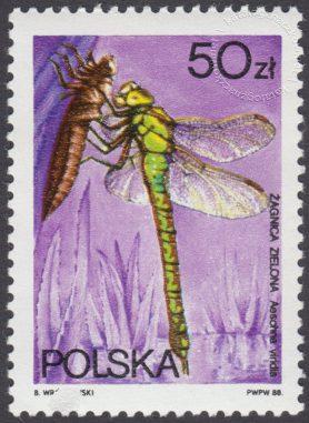 Ważki polskie - 2991