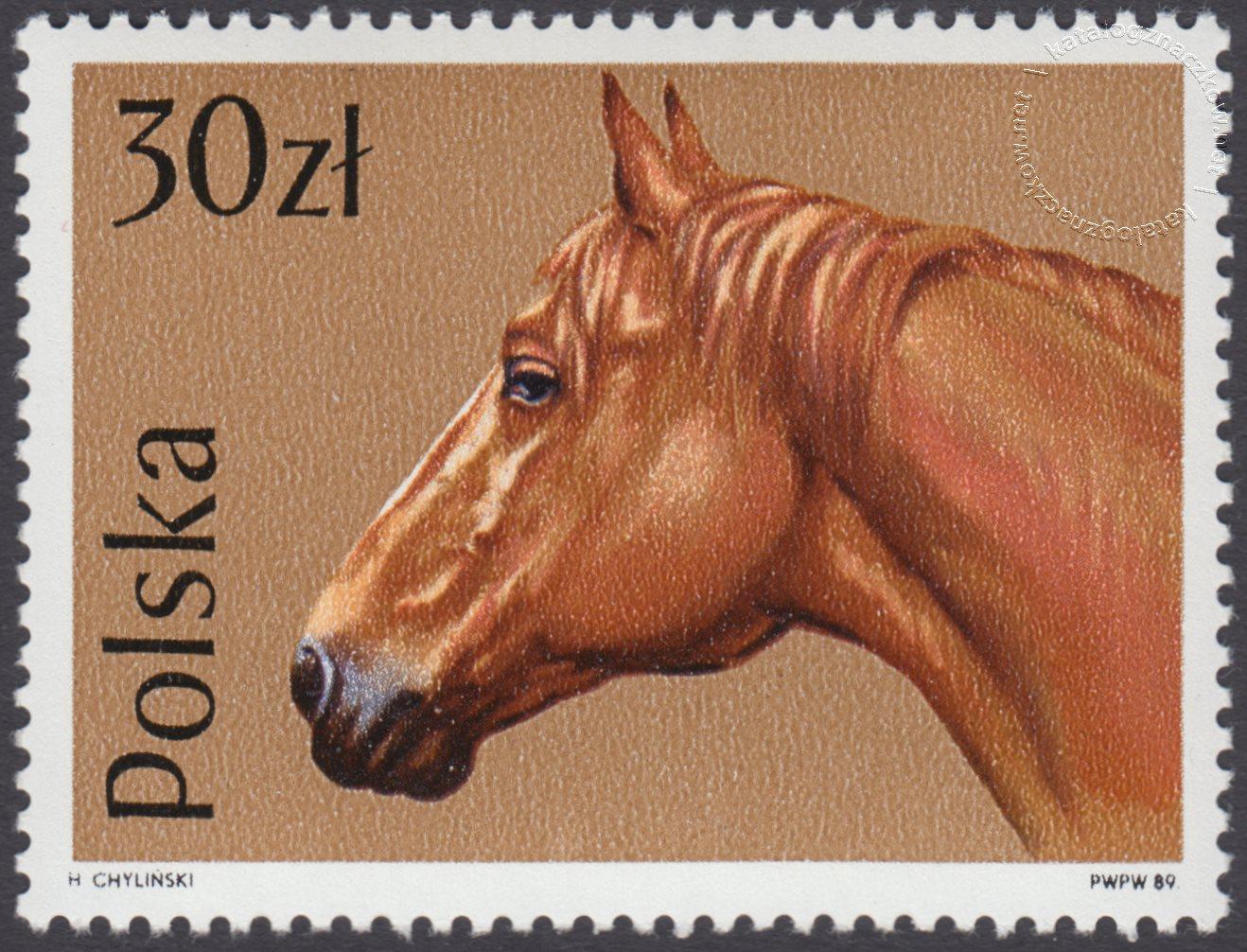 Konie znaczek nr 3046