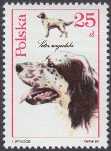 Psy myśliwskie - 3053