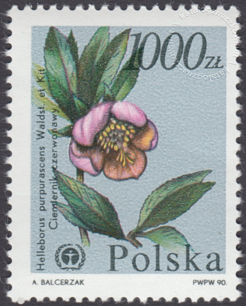 Rośliny ginące w Polsce znaczek nr 3137
