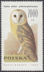 Sowy - 3151