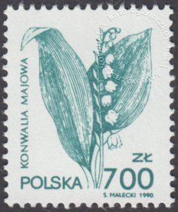 Rośliny lecznicze - 3177