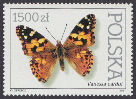 Motyle z kolekcji Instytutu Zoologii PAN w Warszawie - 3197