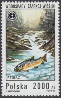 Wodospady polskie - 3231