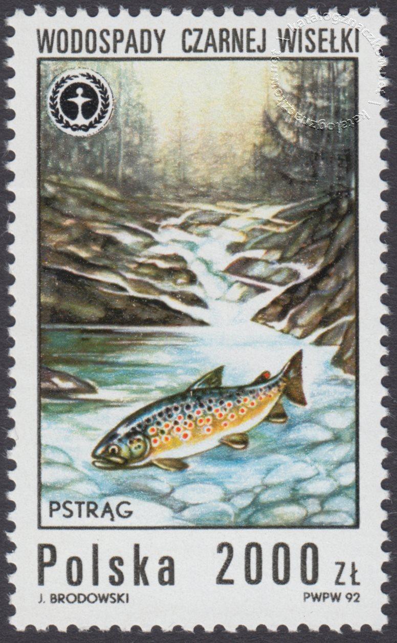 Wodospady polskie znaczek nr 3231