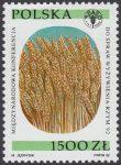 Międzynarodowa Konferencja Organizacji do spraw Wyżywienia - FAO w Rzymie - 3269
