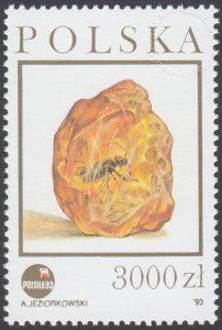 Szlak bursztynowy - 3281