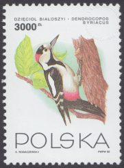 Ptaki ogrodów - 3312