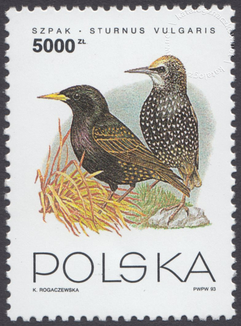 Ptaki ogrodów znaczek nr 3314