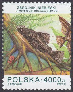 Ryby akwariowe - 3357