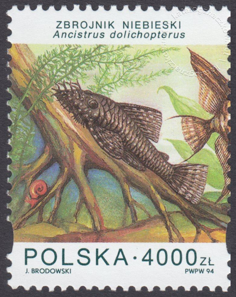 Ryby akwariowe znaczek nr 3357