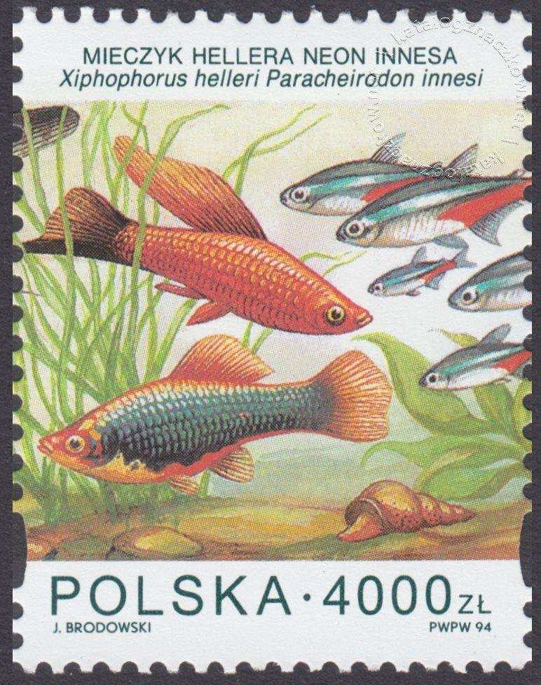 Ryby akwariowe znaczek nr 3359