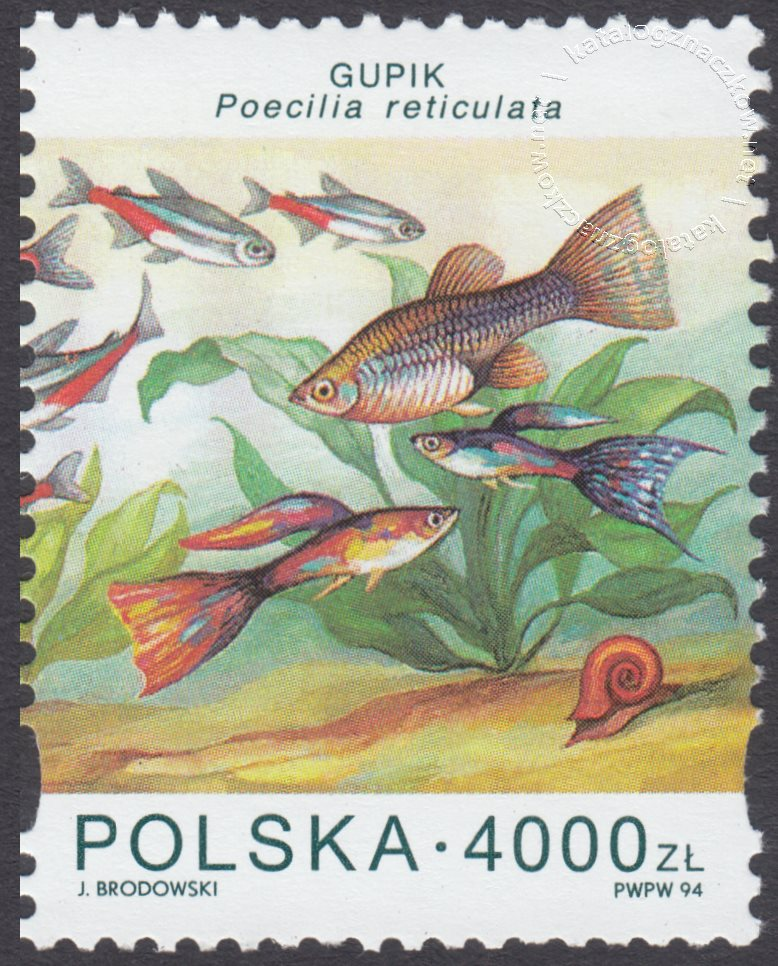 Ryby akwariowe znaczek nr 3360