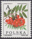 Owoce drzew liściastych - 3401
