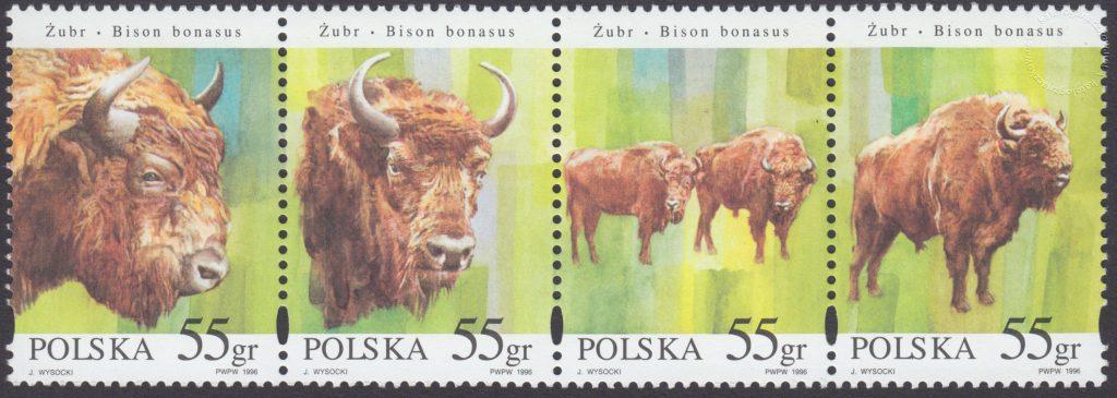 Zwierzęta pod ochroną - żubry znaczki nr 3481-3484