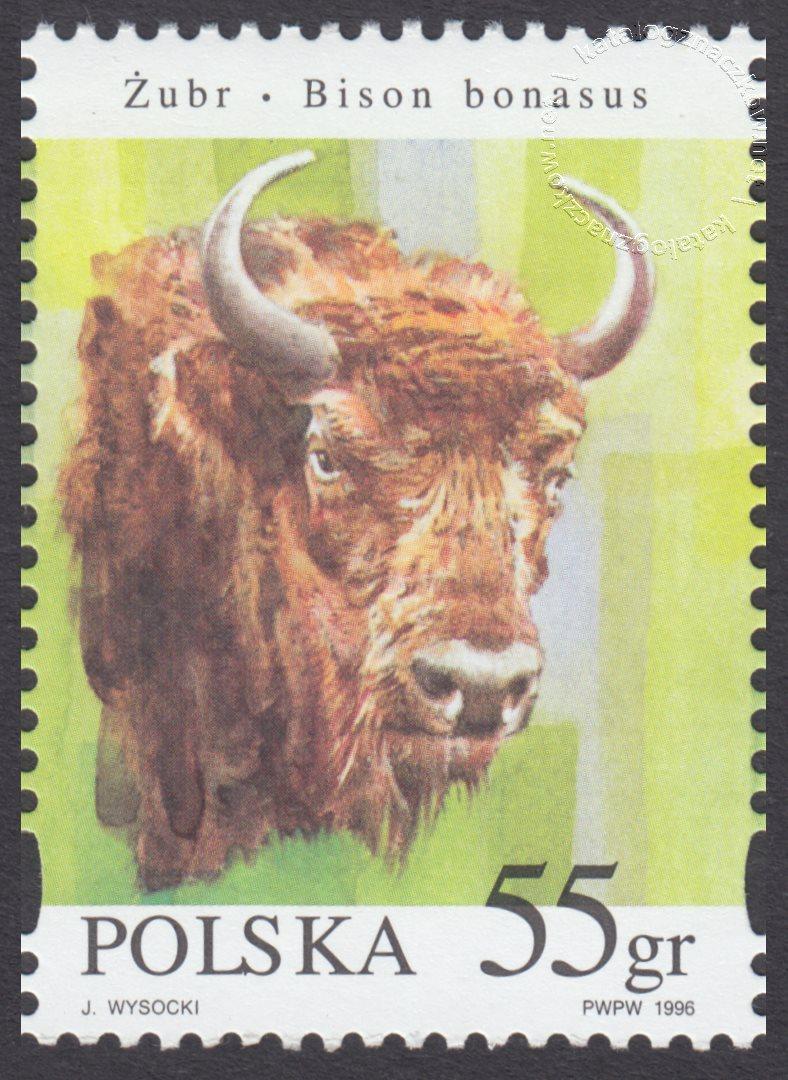 Zwierzęta pod ochroną – żubry znaczek nr 3482