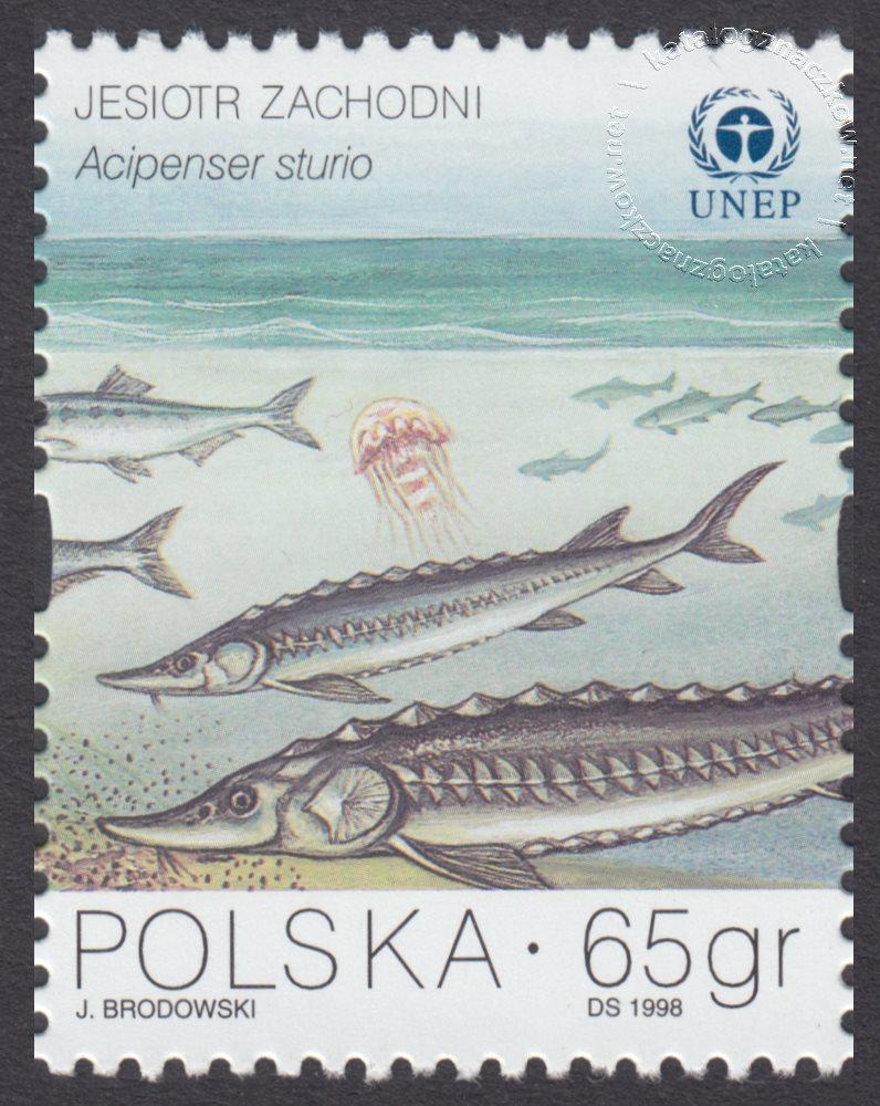 Ochrona Bałtyku znaczek nr 3561