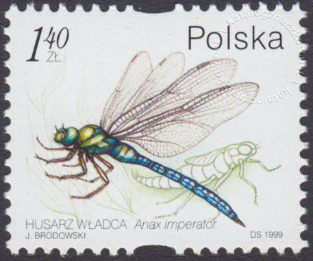 Owady wodne - 3636