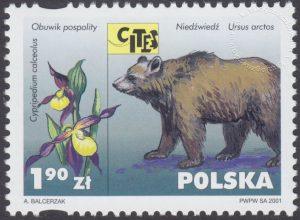 Dzikie zwierzęta i rośliny - gatunki zagrożone wyginięciem - 3749