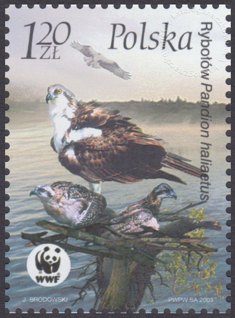 Ptaki znaczek nr 3930