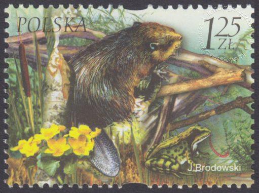 Fauna i flora akwenów słodkowodnych - 3951