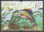 Fauna i flora akwenów słodkowodnych - 3953