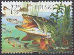 Fauna i flora akwenów słodkowodnych - 3954