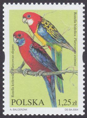 Egzotyczne ptaki hodowlane - 3967