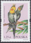 Egzotyczne ptaki hodowlane - 3968