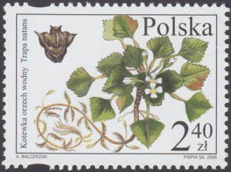 Chronione i zagrożone gatunki flory polskiej - 4083