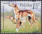 Światowa Wystawa Psów Rasowych 2006 w Poznaniu - 4129