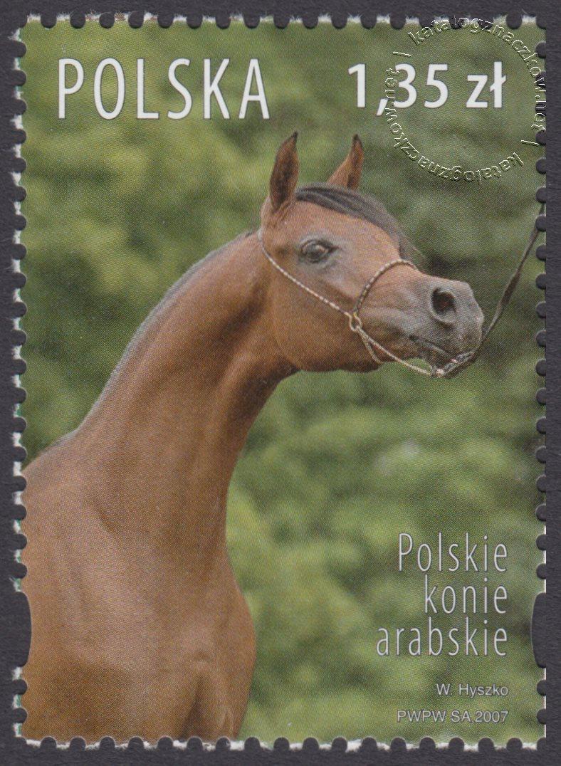 Polskie konie arabskie znaczek nr 4173