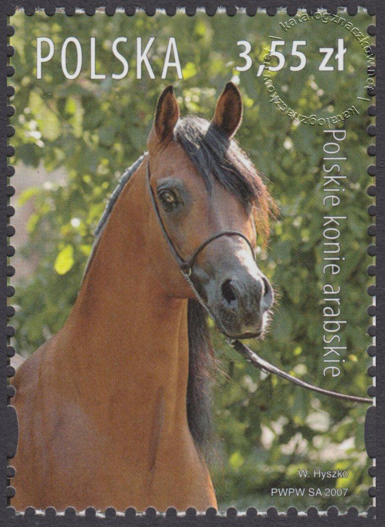 Polskie konie arabskie znaczek nr 4175