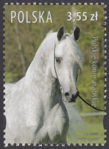 Polskie konie arabskie - 4176